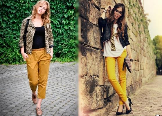 Combination with leopard print