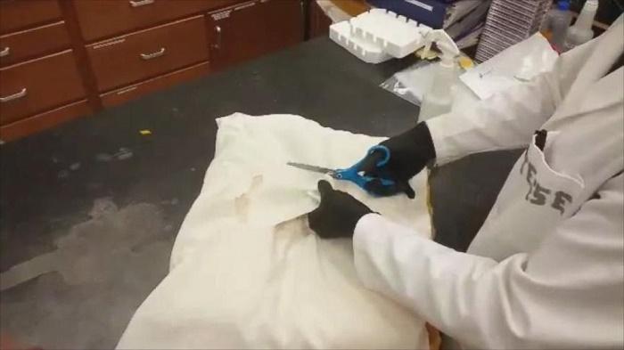 wash moldy pillows